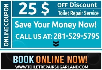 special offer for toilets repair